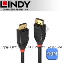 LINDY 林帝 DisplayPort 1.2 4K/60HZ 零失真 光電混合傳輸線 40M (38464)