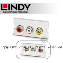 LINDY 林帝 3 X RCA/母(紅/白/黃) to 焊接端子 模組/模塊 KEYSTONE (60532)