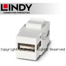 LINDY 林帝 USB2.0 Type-A/母 to A/母 模組/模塊 KEYSTONE (60553)