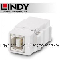 LINDY 林帝 USB2.0 Type-B/母 to B/母 模組/模塊 KEYSTONE (60554)