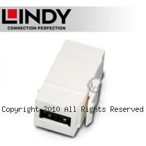 LINDY 林帝 USB2.0 Type-A/母 to A/母 雙面插拔 模組/模塊 KEYSTONE (60583)