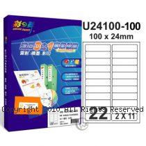 彩之舞 【U24100-100】 A4 3合1 22格(2x11) 標籤紙 100張