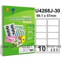 彩之舞【U4268J-30】A4 10格(2x5) 進口噴墨專用標籤紙 30張