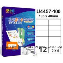 彩之舞 【U4457-100】 A4 3合1 12格(2x6) 標籤紙 100張