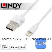 LINDY 林帝 Apple認證 Lightning(8pin) 轉 USB傳輸線 0.5m (31325)