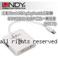 LINDY 林帝 主動式 mini DisplayPort 1.2版 轉 HDMI/DVI-D/DP 三合一轉接器 (41039)