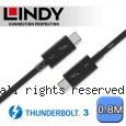 LINDY 林帝 被動式 Thunderbolt 3 INTEL 原廠認證傳輸線, 0.8m (41558)