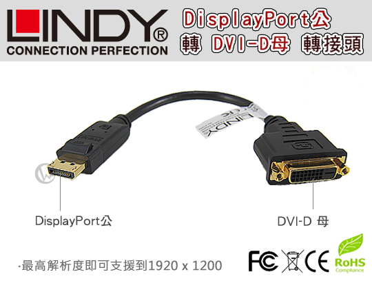 LINDY 林帝 DisplayPort公 轉 DVI-D母 轉換器 (41004) 01