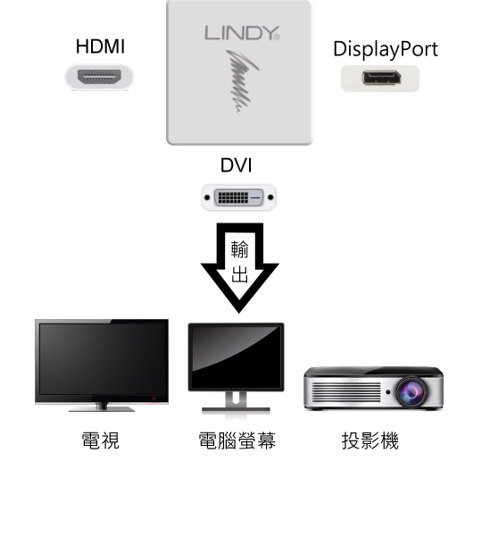 LINDY 林帝 主動式 mini DisplayPort 1.2版 轉 HDMI/DVI-D/DP 三合一轉接器 (41039)  02