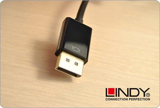 LINDY 林帝 主動式 DisplayPort 轉 DVI-D 轉接器 (41734) 02