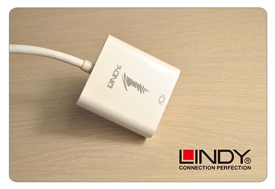 LINDY 林帝 主動式 mini DisplayPort 轉 DVI-D 轉接器 (41733) 01